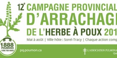 Campagne d'arrachage de l'herbe à poux 2018